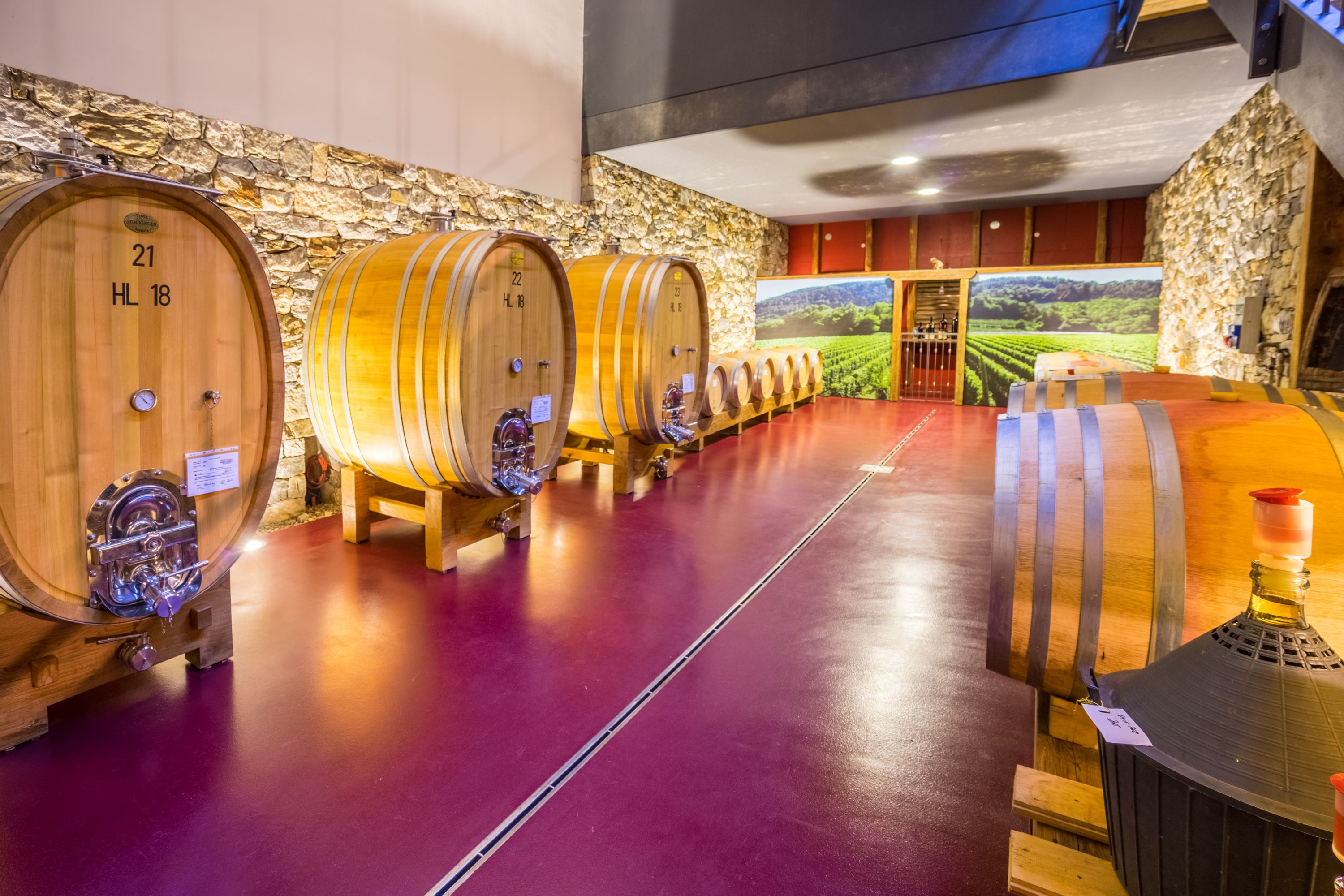Wineries in Merano